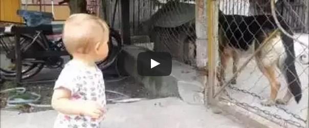 Video_Kep